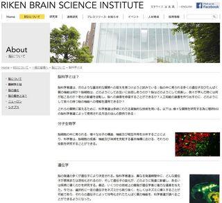 理研WEBサイト:脳科学とは